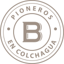 Logo Bisquertt